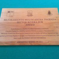 cuadro madera nativa grabado laser barniz