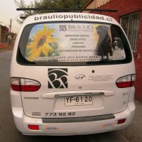 grafica vehicular window vision luneta